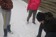 sneeuw rapen